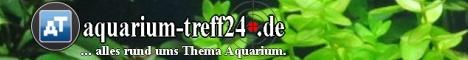 aquarium-treff24.de
